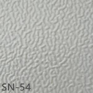 SN-54
